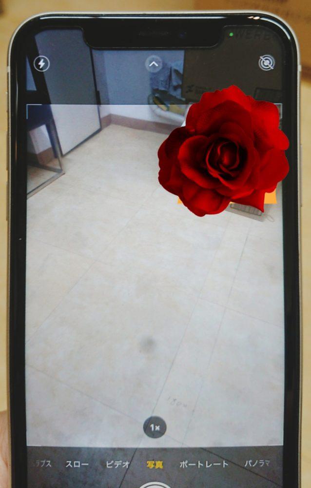 iPhone11背面カメラ修理前